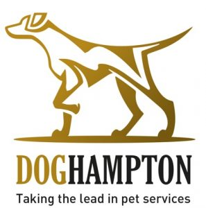 DogHampton, The Dog Blog